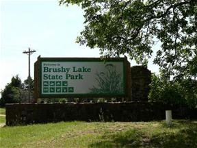 Brushy Lake Park